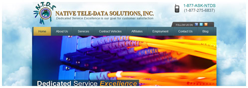 Native Tele-Data Solutions